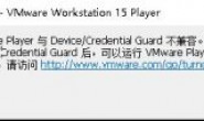 VMware Player 与 Device/Credential Guard 不兼容