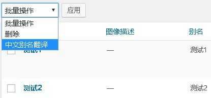 WordPress SEO 优化-批量翻译中文标签别名为英文